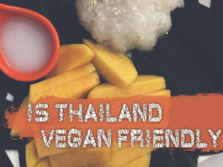 Is Thailand Vegan Friendly? Vegan Phrases, Dishes, Destinations And More