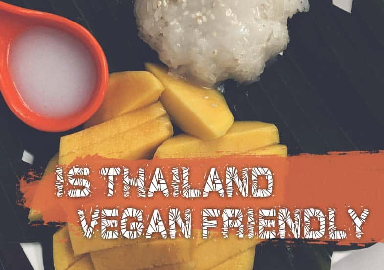 Is Thailand Vegan Friendly Vegan Phrases Dishes And