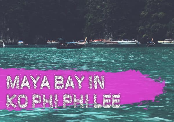 Maya Bay Closed Open