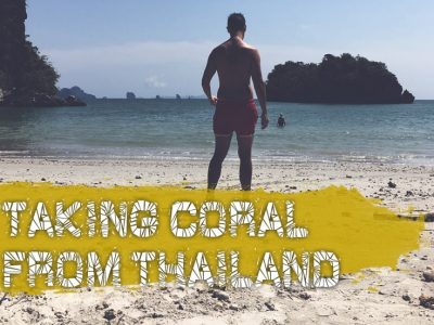 Can I Take Coral Home From Thailand (A Very Bad Idea)
