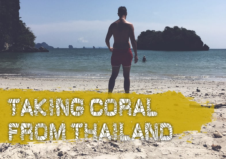 Can I Take Coral Home From Thailand